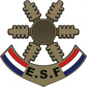 Médaille étoile de bronze des esf